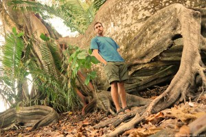 Costa Rica, Osa Peninsula, Panama tree, Sterculia apetala, D.T. Brown, ReStartExperiment.com