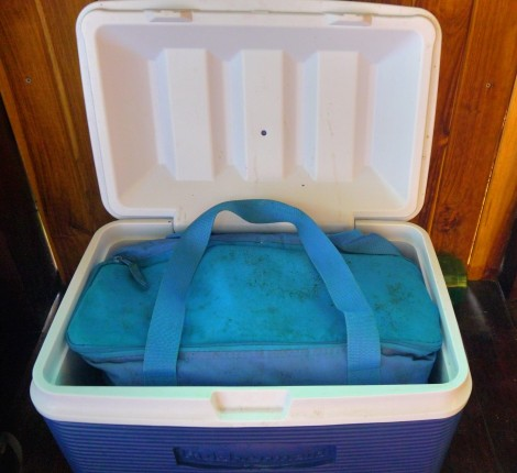 insulated bag in cooler