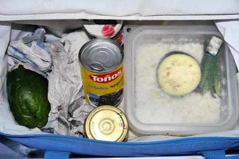 survivalist living out of a cooler, www.restartexperiment.com