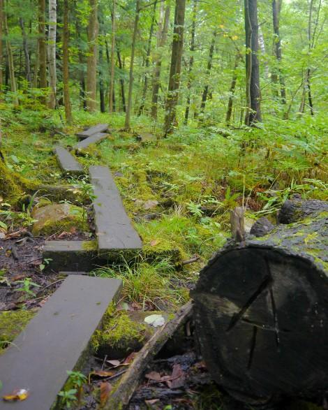 appalachian trail, massachusetts a.t., www.restartexperiment.com