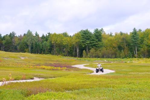 Maine Blueberry Fields, ATV, www.ReStartExperiment.com, Dave Brown